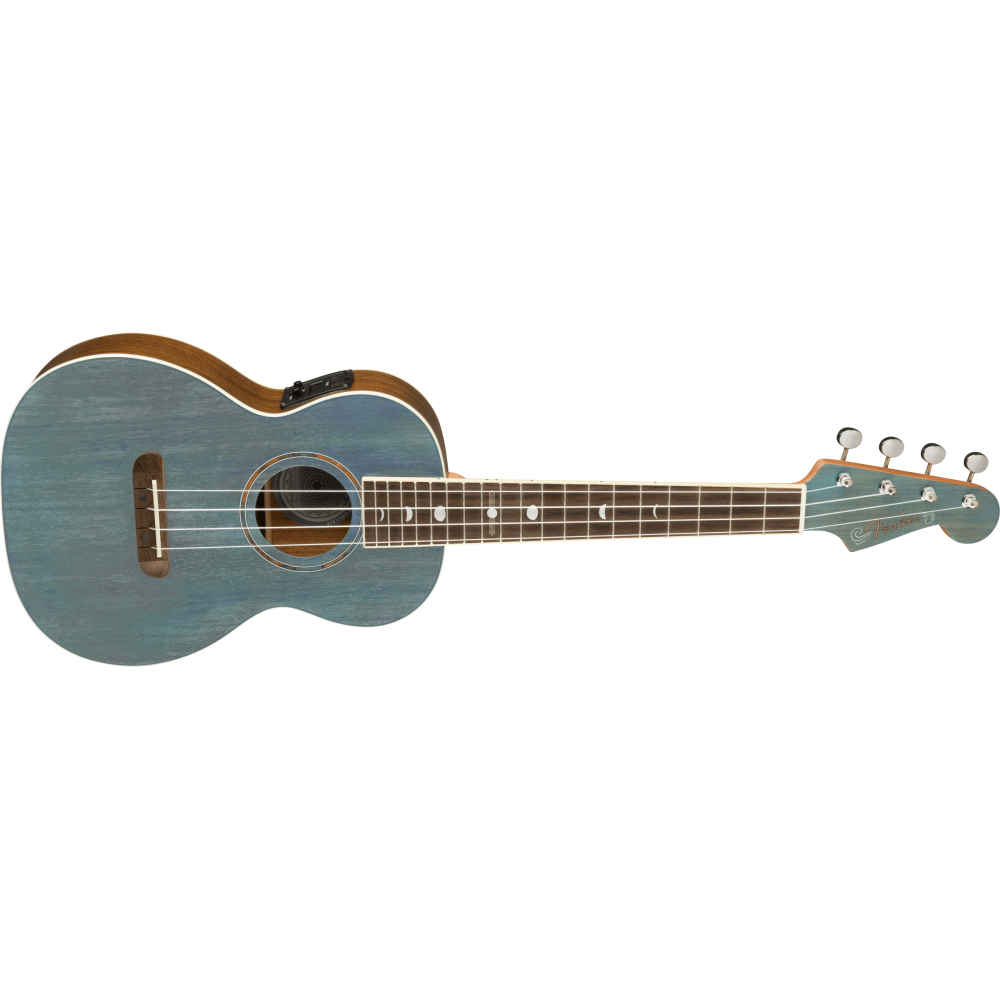 Alvarez BLUES51E Arch Back